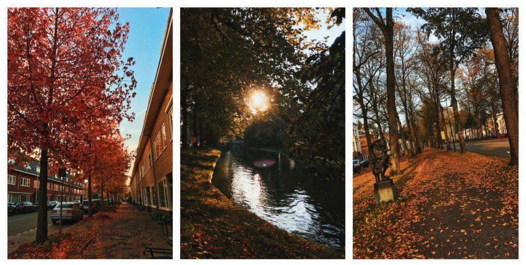 Utrecht herfst autumn the netherlands season